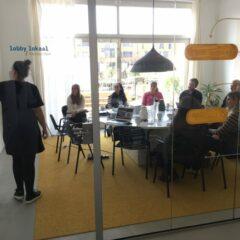 Zeven mini-lessen voor een goede campagne én lobby